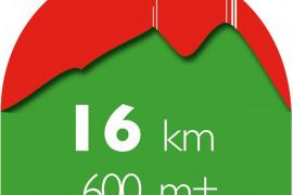 Trail des Mourres 16 km (D+ 600)