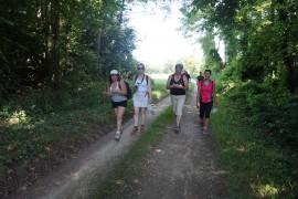 Marche 15kms
