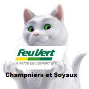 FeuVert Champniers et Soyaux.png