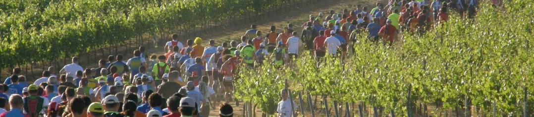La Mosnacotoise Trail du vignoble cognaçais 2020