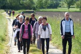 13 km Randonnée et Marche Nordique Allure Libre