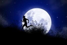 La petite piste 13km nocturne