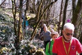 La rando pédestre 11km