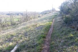 Trail nocturne 8 km 100m D+