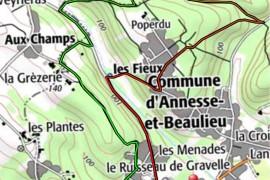 Marche 10 km