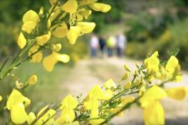 Parcours pédagogique, observation de la nature - 7km