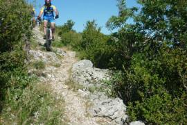 VTT 55 km