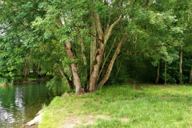 """Trail 7 Km """"La mini Vadrouille"""" (non chronométré)"""