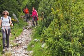 Marche 7km