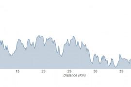 RANDONNÉE VTT - 50 km